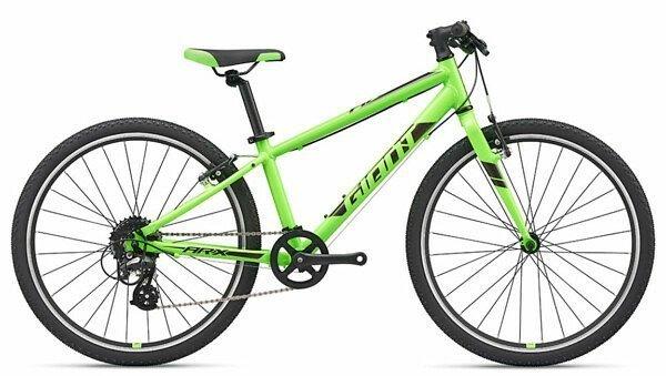 GIANT ARX 24 2019 green