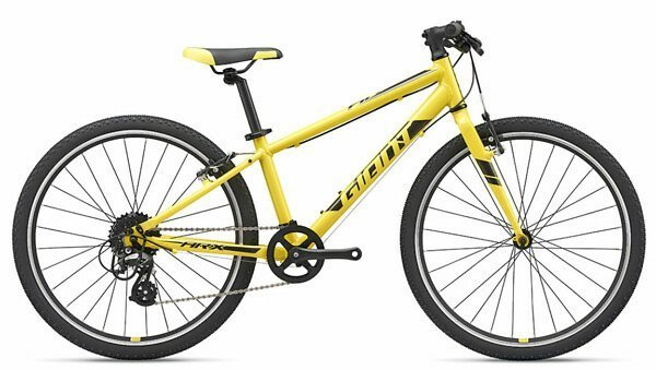 GIANT ARX 24 2019 yellow
