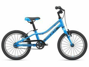 Giant ARX 16 Kids Bike - 2021 - Roe Valley Cycles
